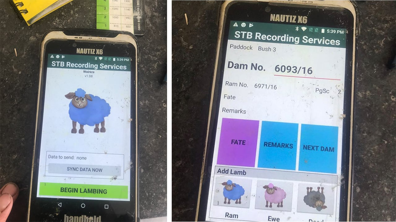 animal tagging and lambing app