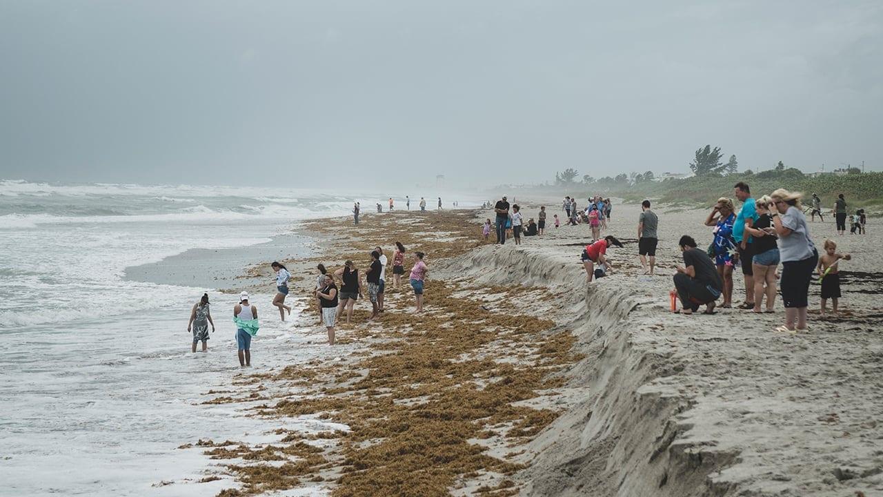 coastal storm impacts